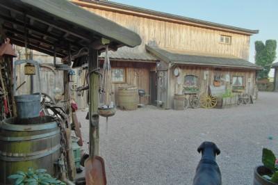 Cowgirls dejtingsajt